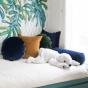 Adri Cushion Navy Blue velvet