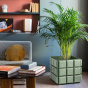 Paris-Milano Green Planter - Cristina Celestino for The Socialite Family
